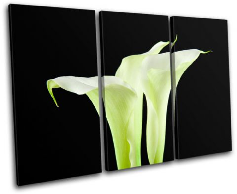 Calla Lily Flowers Floral - 13-1093(00B)-TR32-LO